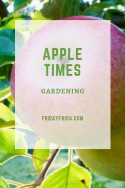 apple times