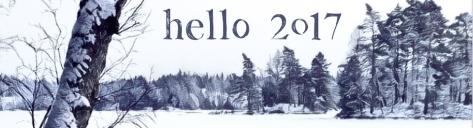 2017b